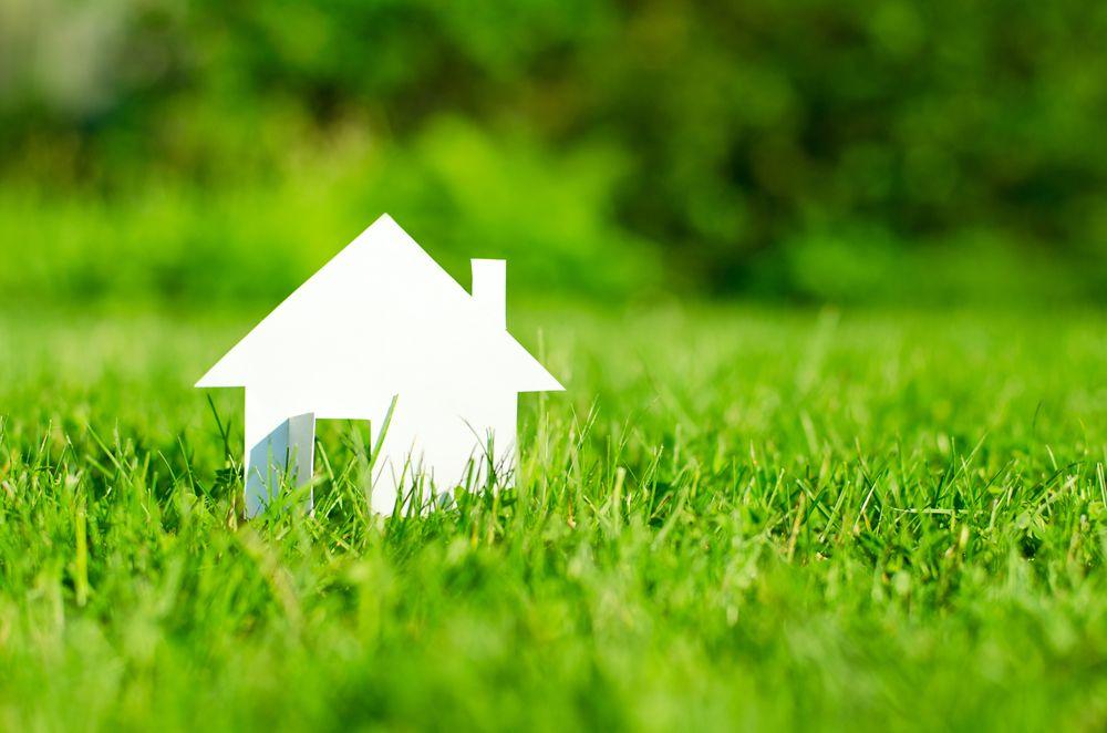 Murs et toitures végétalisés : à quoi ça sert ?