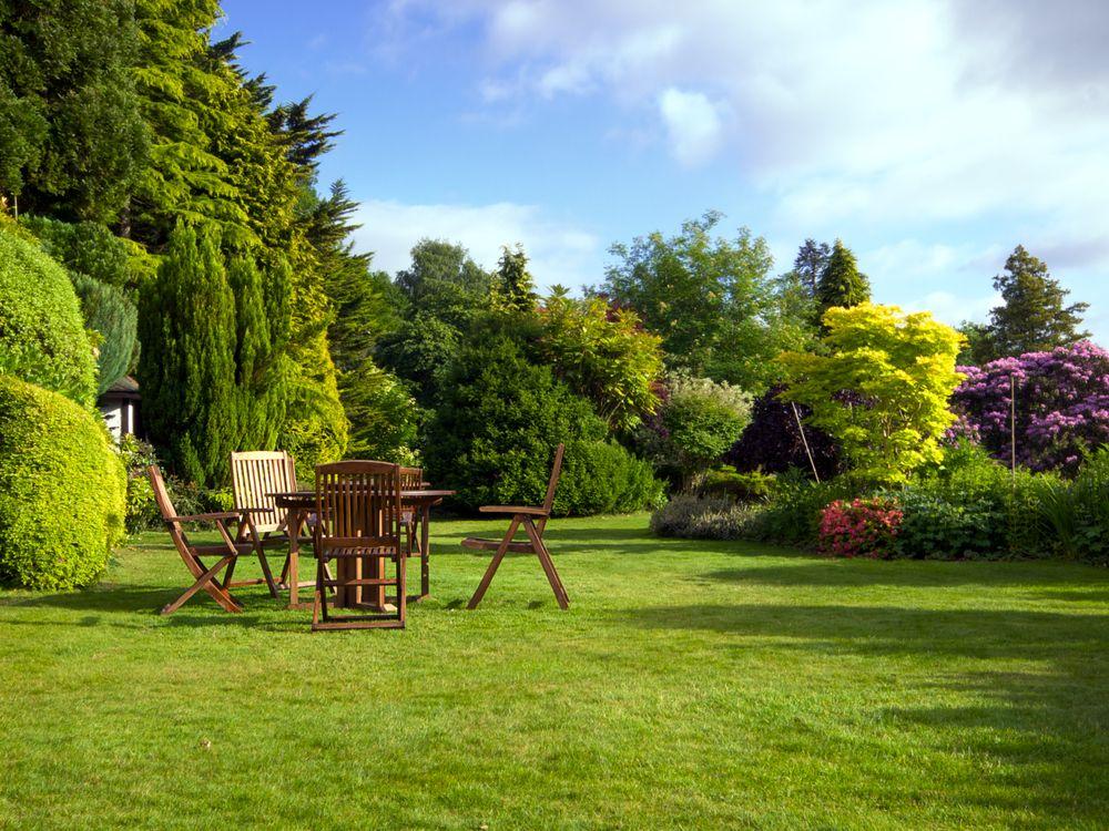 Jardin : respectez les distances de plantation