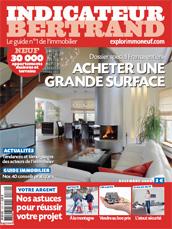 le-de-France : une vente sur cinq voit grand